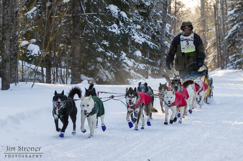 Peter McClelland near Caribou road crossing during the 2014 John Beargrease Marathon race