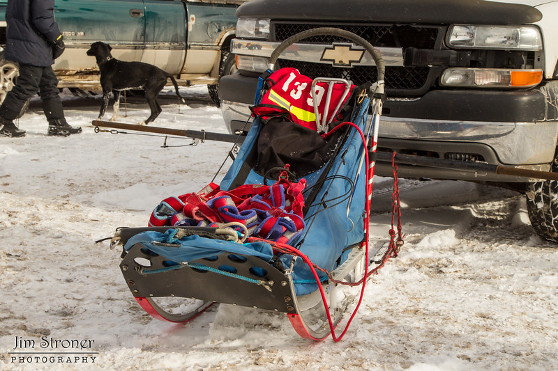 Mike Hoff's 2014 John Beargrease Mid-Distance sled
