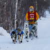 Ross Fraboni near Tofte at the 2014 John Beargrease Mid-Distance race