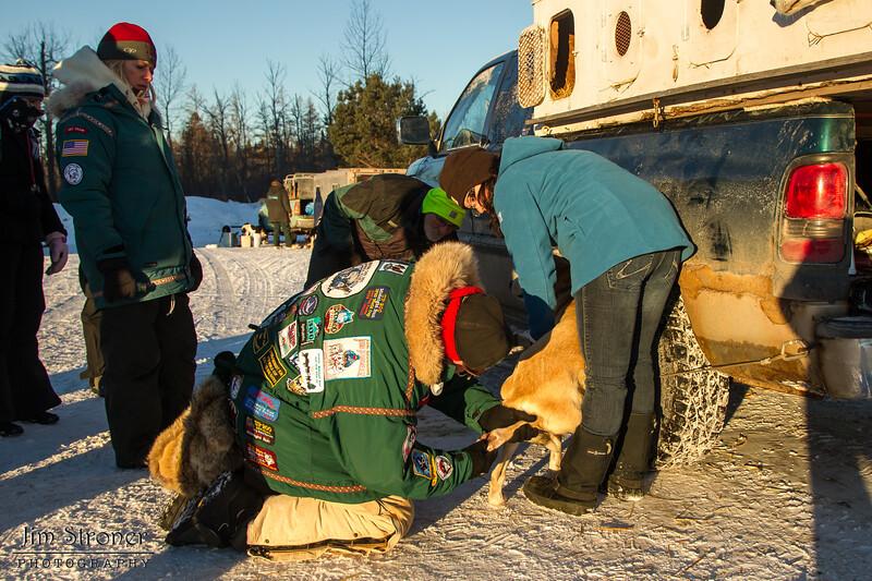 Billie Diver at 2014 John Beargrease Sled dog race vet check