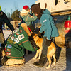 Billie Diver at 2014 John Beargrease Sled dog race vet check