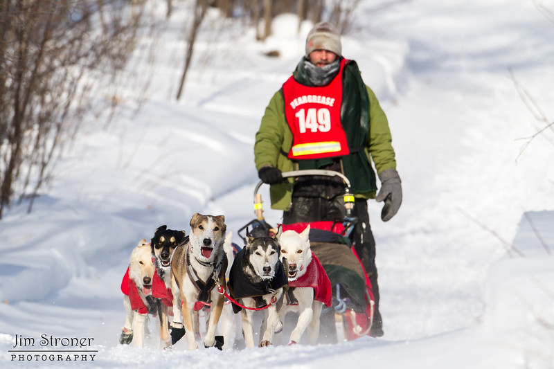 Zach Brown near Tofte at the 2014 John Beargrease Mid-Distance race