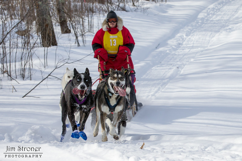 Ann Schultz on the trail near Outing during the Mid-Minnesota 150 sled dog race