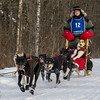 Bob Johnson on the trail near Remer during the Mid-Minnesota 150 sled dog race