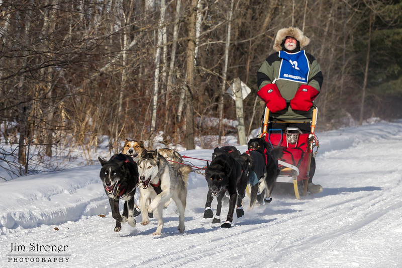 Bob Johnson on the trail near Remer at the start of the Mid-Minnesota 150 sled dog race