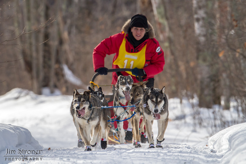 Darcy Nord on the trail near Windy Lake during the Mid-Minnesota 150 sled dog race