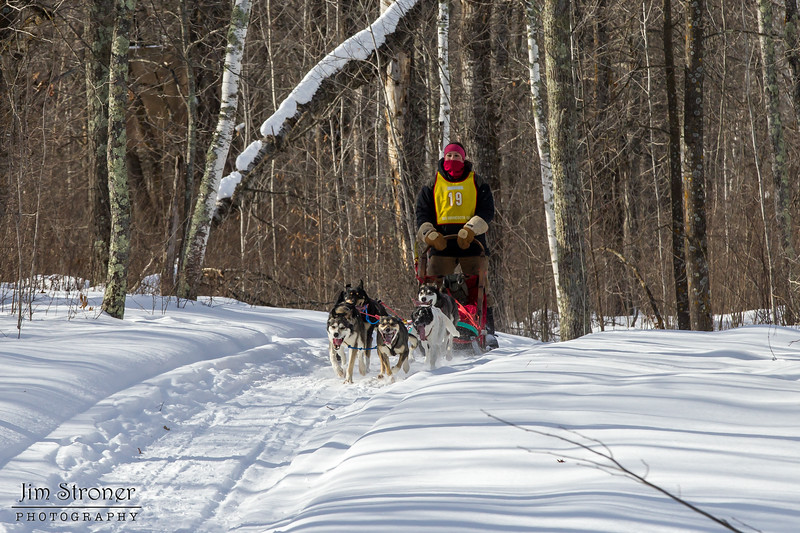 Kelly Sipper on the trail near Outing during the Mid-Minnesota 150 sled dog race