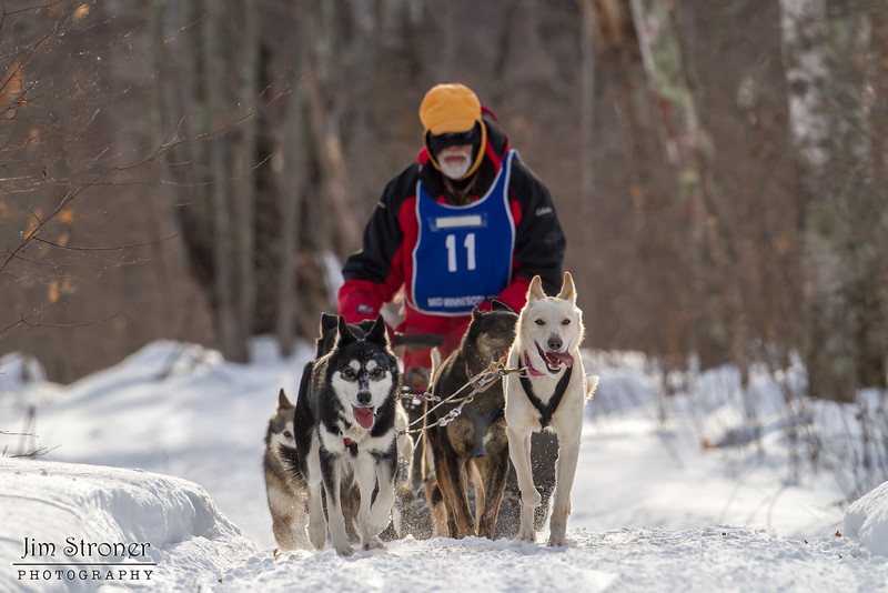 Linus Meyer on the trail near Windy Lake during the Mid-Minnesota 150 sled dog race