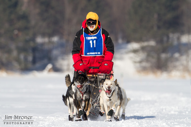 Linus Meyer on the trail crossing Windy Lake during the Mid-Minnesota 150 sled dog race