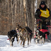 Nick Turman on the trail near Windy Lake during the Mid-Minnesota 150 sled dog race