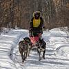 Nick Turman on the trail near Windy Lake during the Mid-Minnesota 150 sled dog race