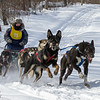 Patty Salls on the trail near Outing during the Mid-Minnesota 150 sled dog race