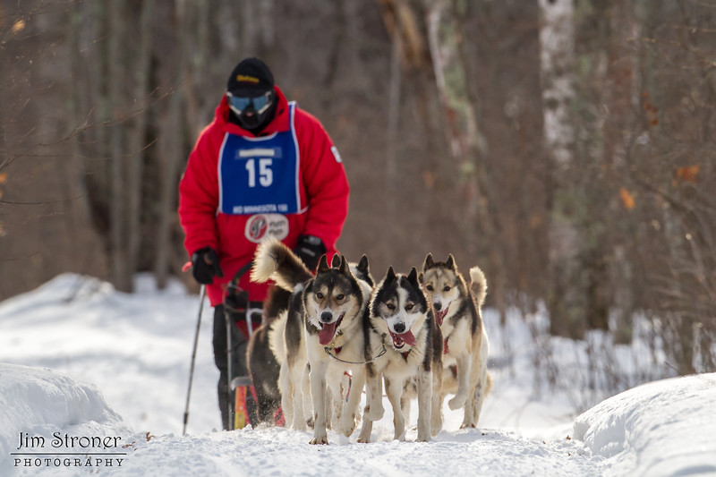 Saul Ellering on the trail near Windy Lake during the Mid-Minnesota 150 sled dog race