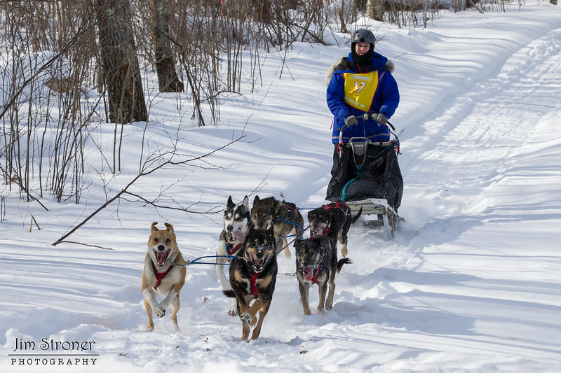 Teri Gapinski on the trail near Outing during the Mid-Minnesota 150 sled dog race