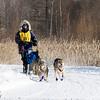 Alex LaPlante's 6-dog team near the start of the 2015 WolfTrack Classic