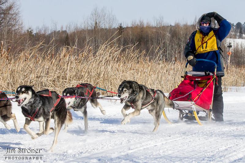AnnStead's 6-dog team near the start of the 2015 WolfTrack Classic