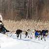 Elizabeth Graves 6-dog team near the start of the 2015 WolfTrack Classic