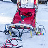 Bob Johnson's sled before the start of the 2015 WolfTrack Classic