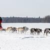 Bob Johnson's 8-dog team crossing Bear Head Lake during the 2015 WolfTrack Classic