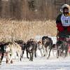 Bob Johnson's 8-dog team near the start of the 2015 WolfTrack Classic