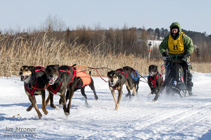 Clayton Schneider's winning 6-dog team near the start of the 2015 WolfTrack Classic