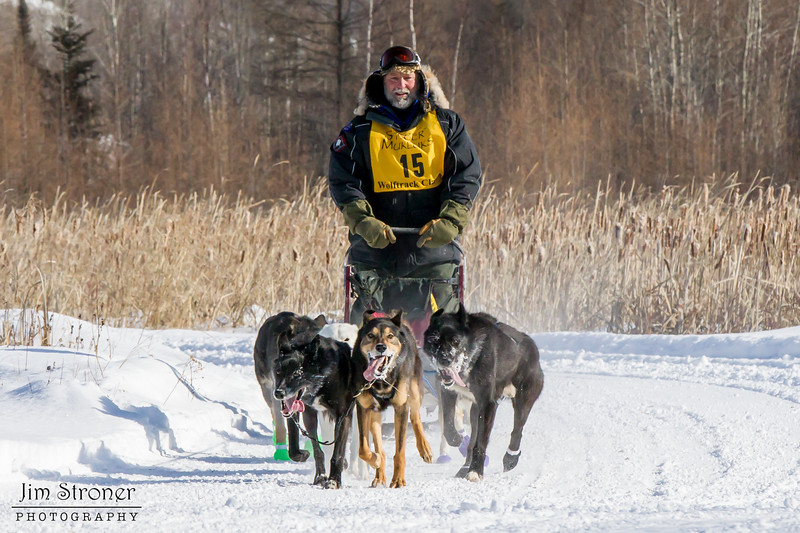 Earl Torgerson's 6-dog team near the start of the 2015 WolfTrack Classic