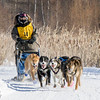 Michaela Osborne's 6-dog team near the start of the 2015 WolfTrack Classic