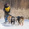 Michaela Osborne's 6-dog team near the start of the 2015 WolfTrack Classic