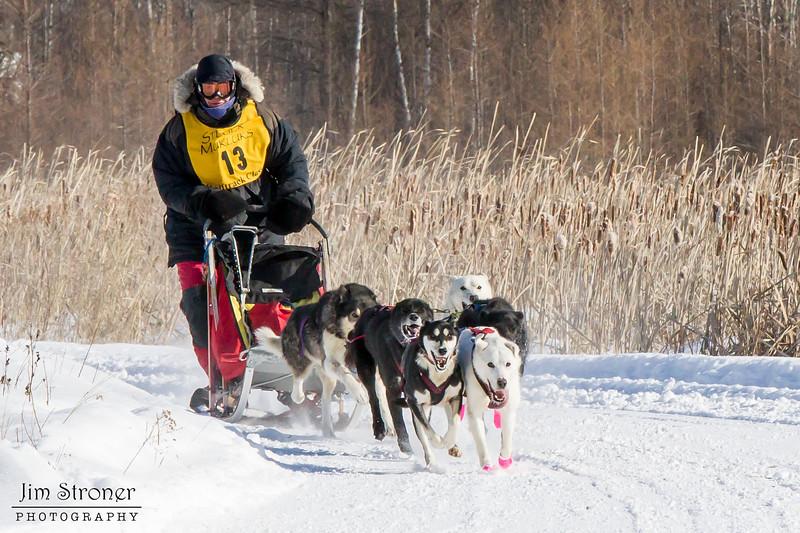 Nancy Johnson's 6-dog team near the start of the 2015 WolfTrack Classic