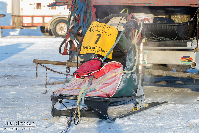 Nick Turman's 6-dog sled before the start of the 2015 WolfTrack Classic