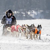 Saul Ellering's 12-dog team crossing Bear Head Lake during the 2015 WolfTrack Classic
