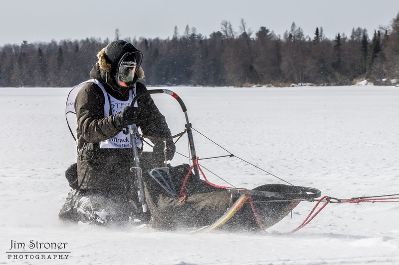 Saul Ellering's 12-dog team crossing Bear Head Lake during the 2015 WolfTrack Classic