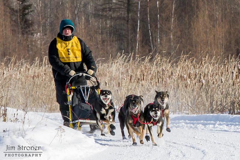 Scott Olson's 6-dog team near the start of the 2015 WolfTrack Classic