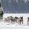 Shawn McCarty's 12-dog team crossing Bear Head Lake during the 2015 WolfTrack Classic