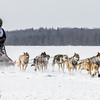 Tim Chisholm's 8-dog team crossing Bear Head Lake during the 2015 WolfTrack Classic