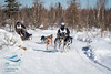 4-dog Day 2-1825