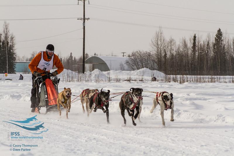 Kourosh Partow 2013 IFSS - 6-dog Class Day 1