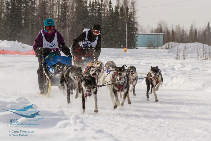 2013 IFSS - 6-dog Class Day 1