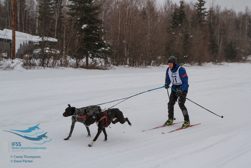 Andrew Warwick (USA) - 2013 IFSS Men 2-Dog Skijor Day 1