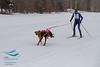 Kale Casey (USA) - 2013 IFSS Men 2-Dog Skijor Day 1