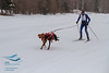 Kale Casey (USA) - 2013 IFSS Men 2-Dog Skijor Day 1
