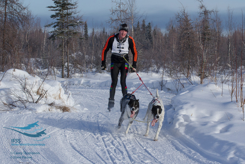 2013 IFSS 2-dog Skijoring Day 2