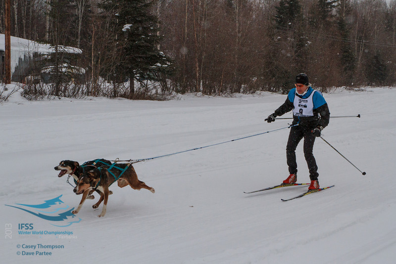Philip Friedlander (Australia) - 2013 IFSS Men 2-Dog Skijor Day 1
