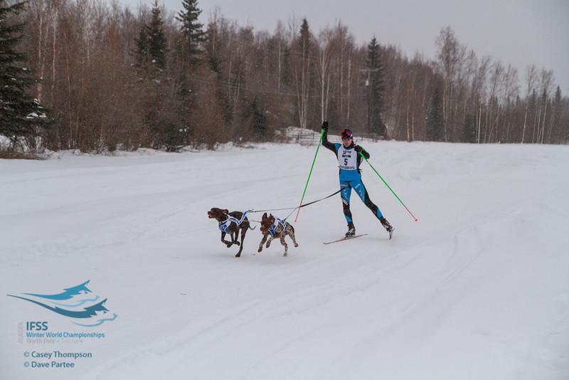 Samuli Nissanen (Finland) - 2013 IFSS Men 2-Dog Skijor Day 1