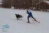Greg Jurek (USA) - 2013 IFSS Men 2-Dog Skijor Day 1