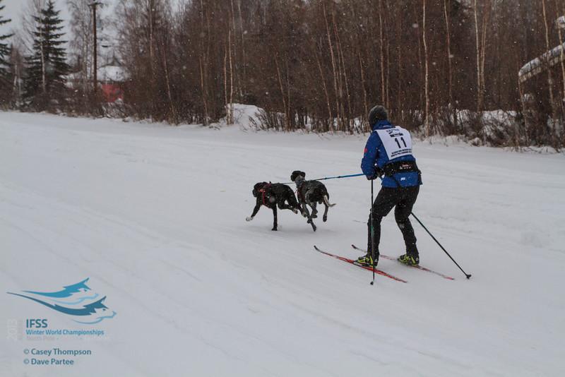 Andrew Warwick (USA) - 2013 IFSS Men 2-Dog Skijor Day 1