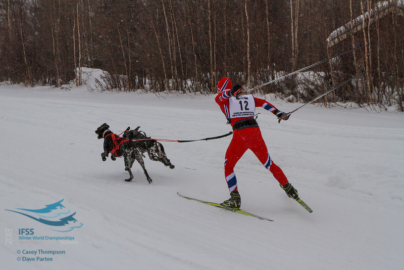 Yngve Hoel (Norway) - 2013 IFSS Men 2-Dog Skijor Day 1