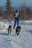 2013 IFSS 2-dog Skijoring Day 2