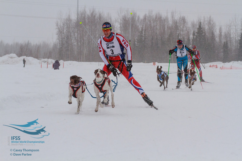 Mike Christman (USA), Samuli Nissenen (Finland), Svein Ivar Moen (Norway) - 2013 IFSS Men 2-Dog Skijor Day 1