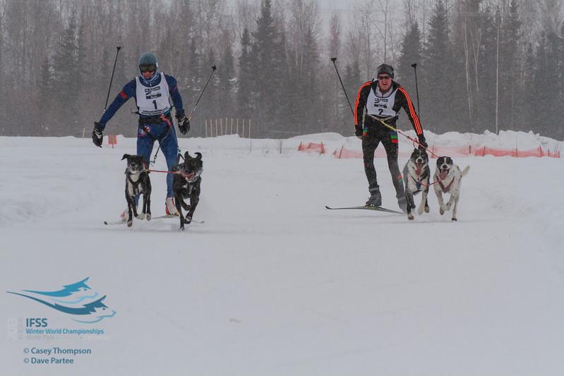Chuck Pratt (USA), Ivar Appleman (Netherlands) - 2013 IFSS Men 2-Dog Skijor Day 1